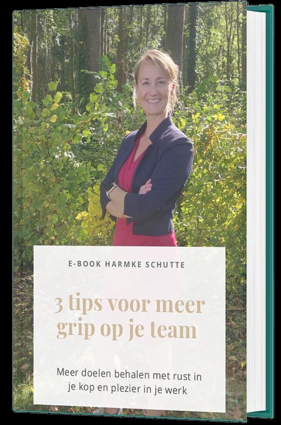 gratis ebook_leidinggevenden_enmove coaching by harmke